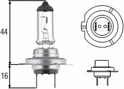 Лампа накаливания, фара дальнего света; Лампа накаливания, основная фара; Лампа накаливания, противотуманная фара; Лампа накаливания; Лампа накаливания, основная фара; Лампа накаливания, противотуманная фара; Лампа накаливания, фара с авт. системой стабилизации; Лампа накаливания, фара дневного освещения HELLA купить